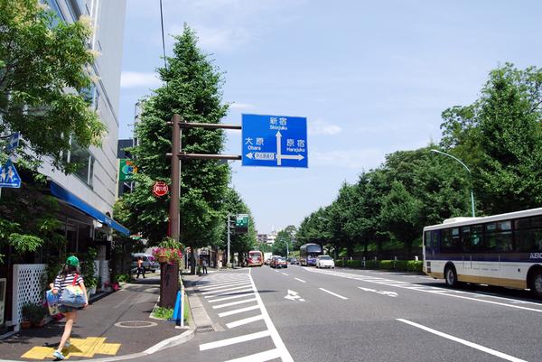 DSC_0032d.JPG